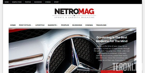 Адаптивный шаблон WordPress - NetroMag